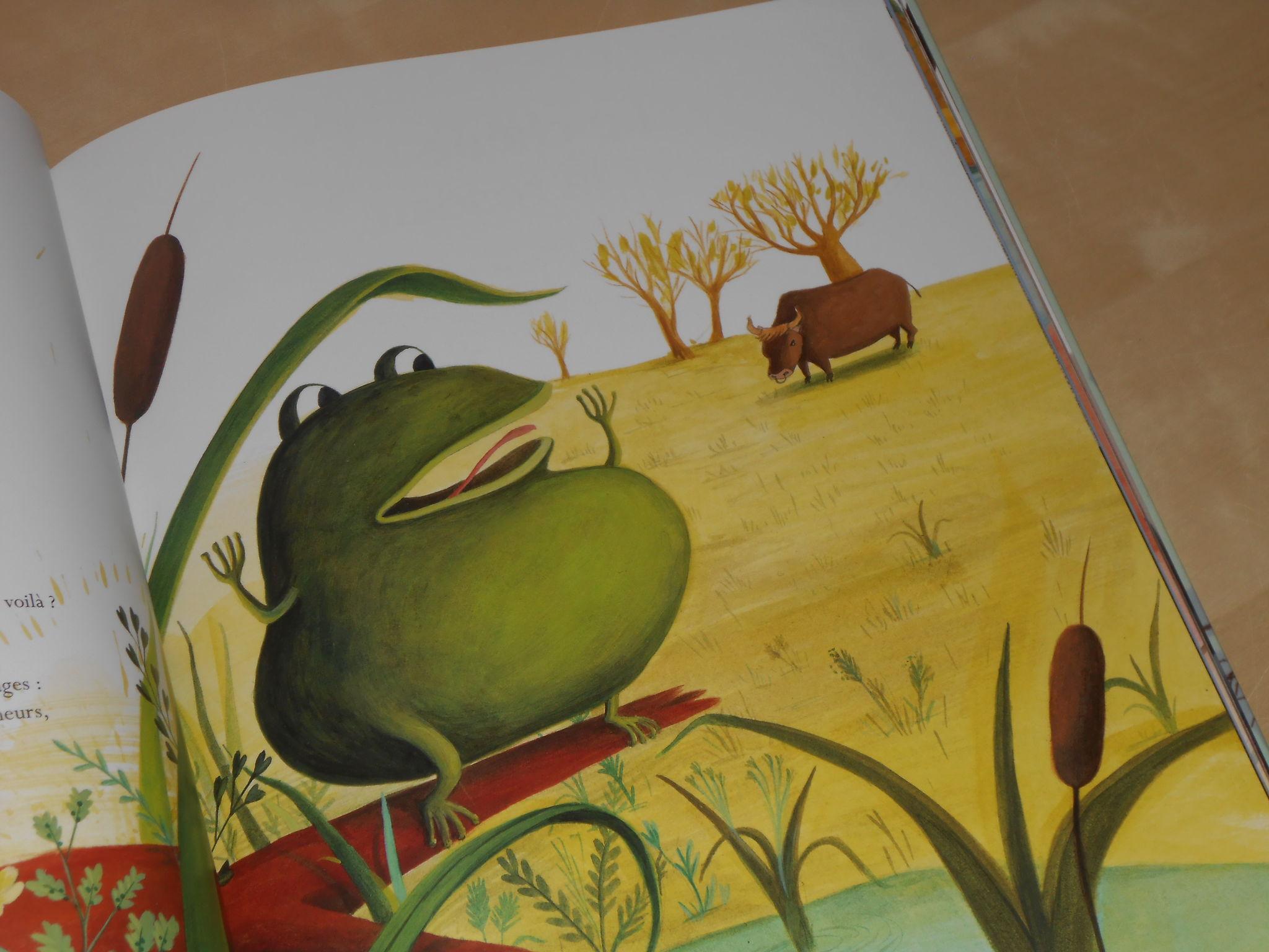 Les fables de la fontaine a l 39 ombre du saule - Image la grenouille et le boeuf ...