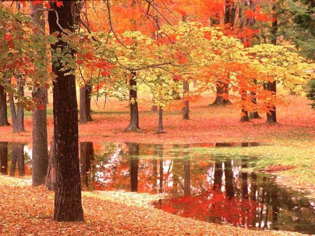 Chant d'automne.
