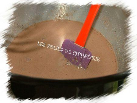 Yaourts emprésurés au chocolat 2