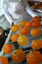 fruits confits provence
