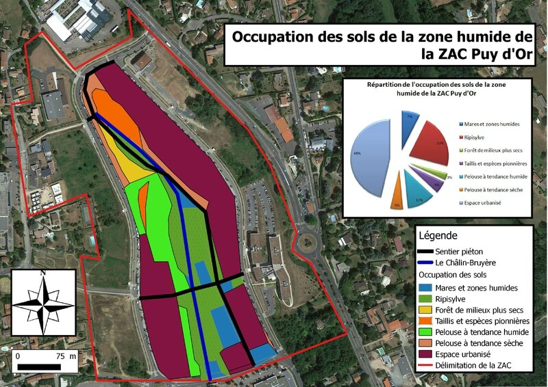 Occupation des sols de la zone humide la Zac Puy d'Or plus lisible