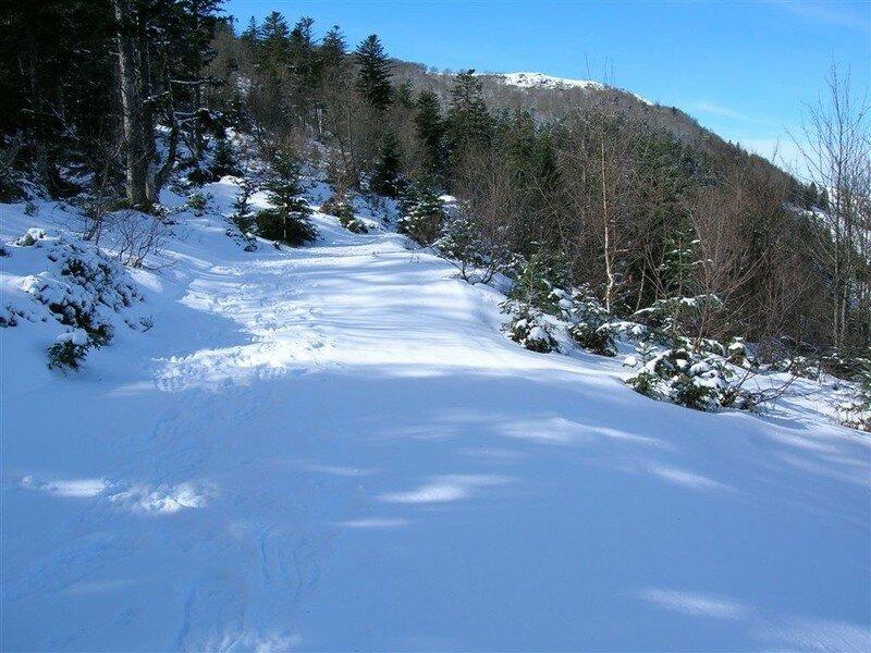 chemin_neige