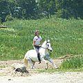Jeux équestres manchots 2013 (177)