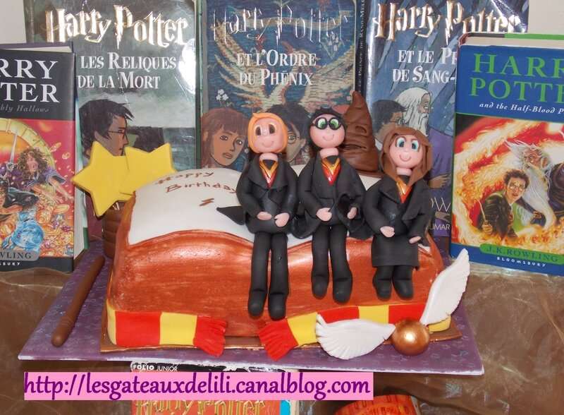 2014 03 16 - Harry Potter's book (20)