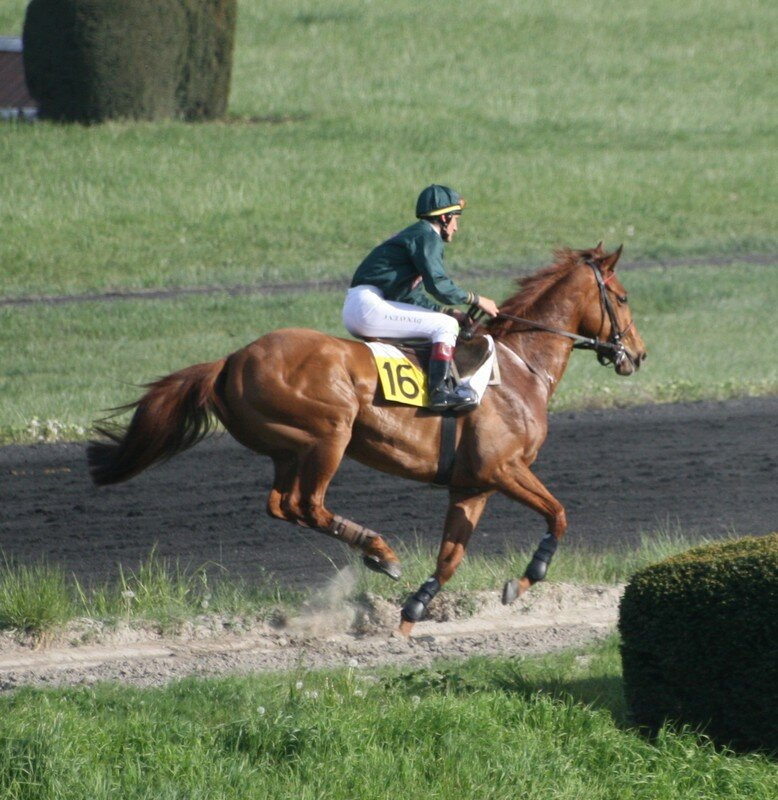 Avril 2007, Hoerdt