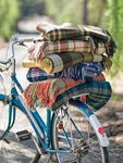 plaid-on-bike-pendltn-mills