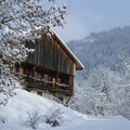 Ambiance hivernale