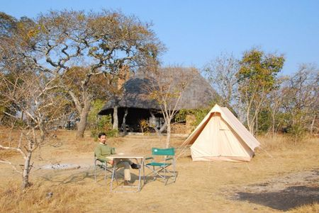 Zambie (531)