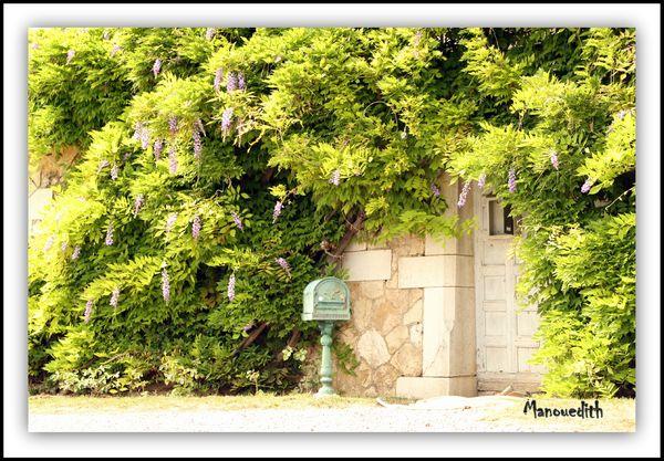 1 hostel