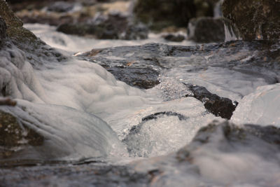 ruisseau4