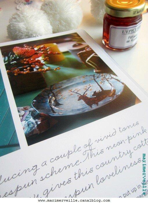 Savourer les jolies pages des livres, en hiver - slow life Marimerveille