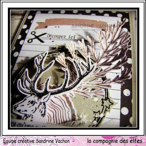 Sandrine VACHON 4 déc DT LCDE (4)