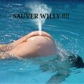Sauvez Willy!!!