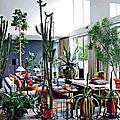 Vivre au milieu des cactus