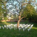installation de MF HURBAULT jardin 2 rue de Dieu