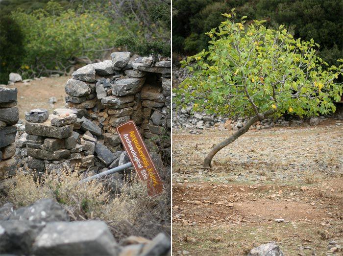 Web_Vacances_Crete_Oct10_7