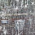 Blancheur dans les espaces, variation 4