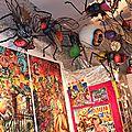 Cabinet des Curiosités - Lille - 2008