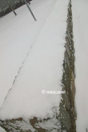 neige_17_12_09