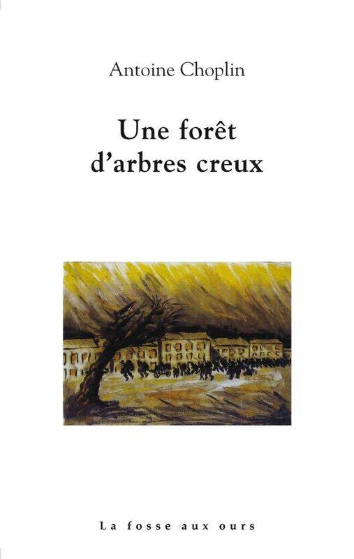 foret-darbres-creux-01