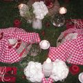 table picnic 026