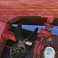 2-La polymère, série 14 (de mai à septembre 2006)