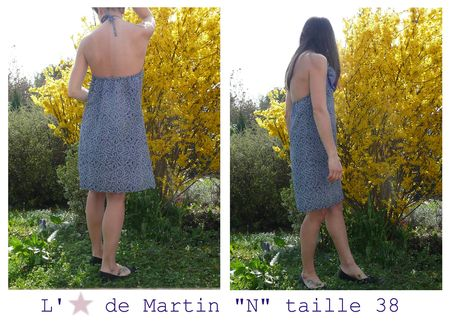 N38_etoile_de_martin