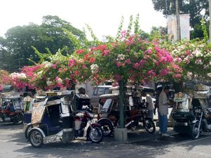 flowery tricycle terminal outside Vigan Public Market 01