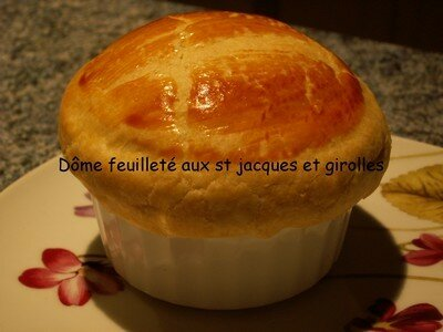 Copie_de_dome_feuillet_