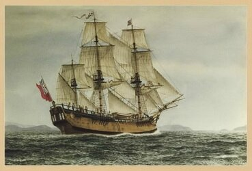cook-endeavour madere