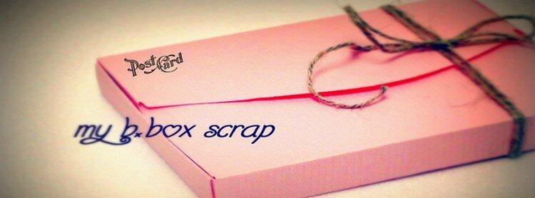 Mon projet...My B.Box Scrap