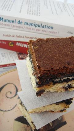 brownie_cookie_8