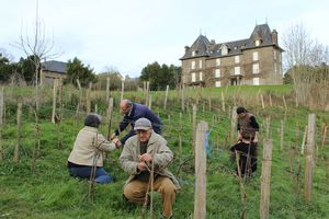 vigne Avranches ferme du Petit Changeons Quartier Nature mars 2013 fête des sens