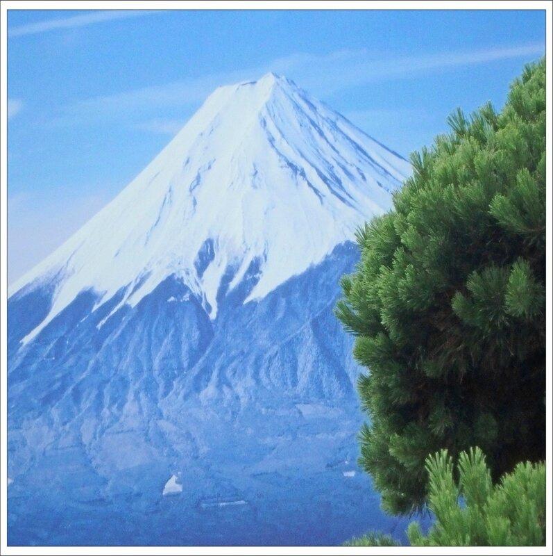 Gacilly 130716 83 pin Fuji