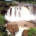 CHUTES DU NIL BLEU (région Amhara, zone Gojam Ouest)