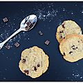 cookies_choc5