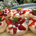 MINI-PAVLOVAS