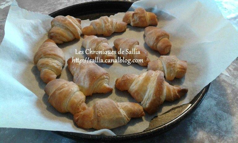 Croissants Felder 042017
