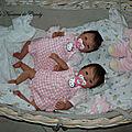 5 jumelle reborn