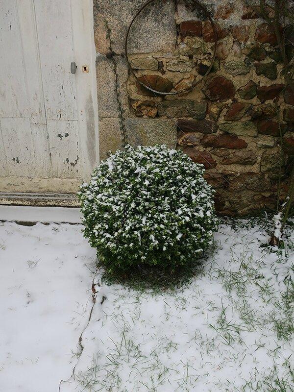neige k