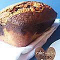 Cake marbré [cacao coco]