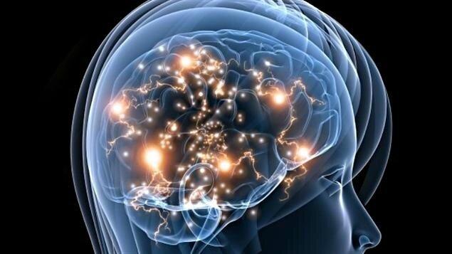 ob_10727a_110329-08t97-cerveau-femme-activite-sn