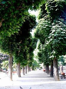 Le_Parc_de_Salengro_4