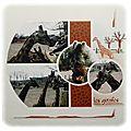 Les girafes de pairy daiza