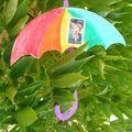 parapluie pascale la perleée oblit