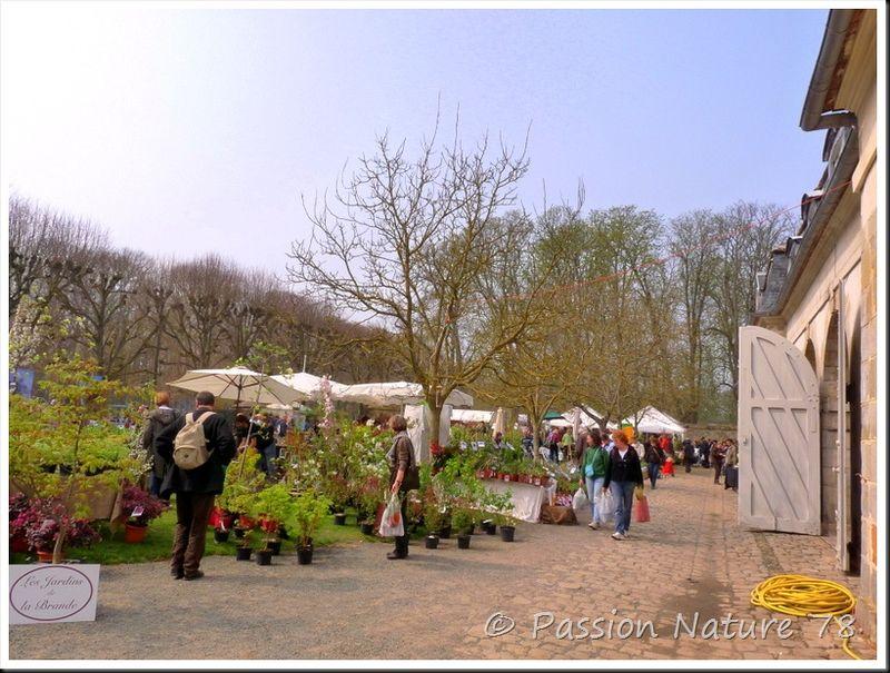 Saint-Jean de Beauregard fête les plantes (24)