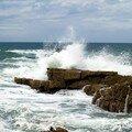 les-vagues_209