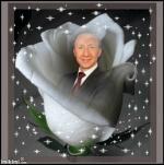SB - rose blanche