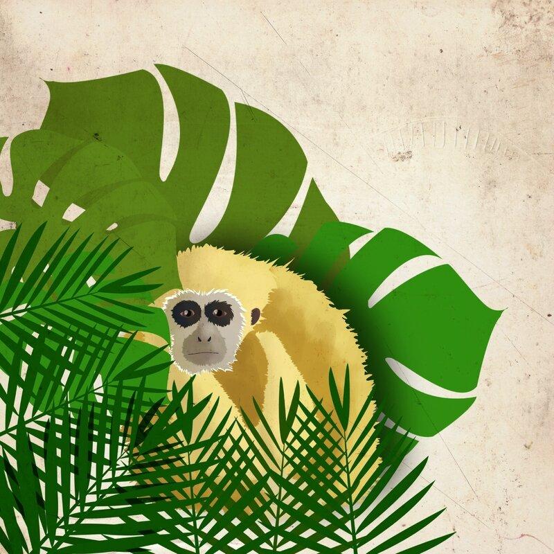 gibbon-foret-1