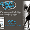 ** wicked fall by author sawyer bennett**